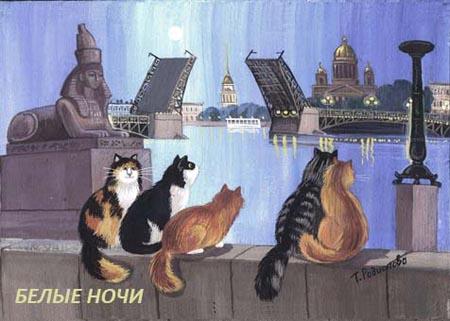 Коты и питер почему